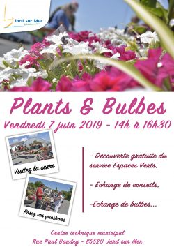 Plants et Bulbes