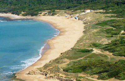 Réouverture des plages sous conditions