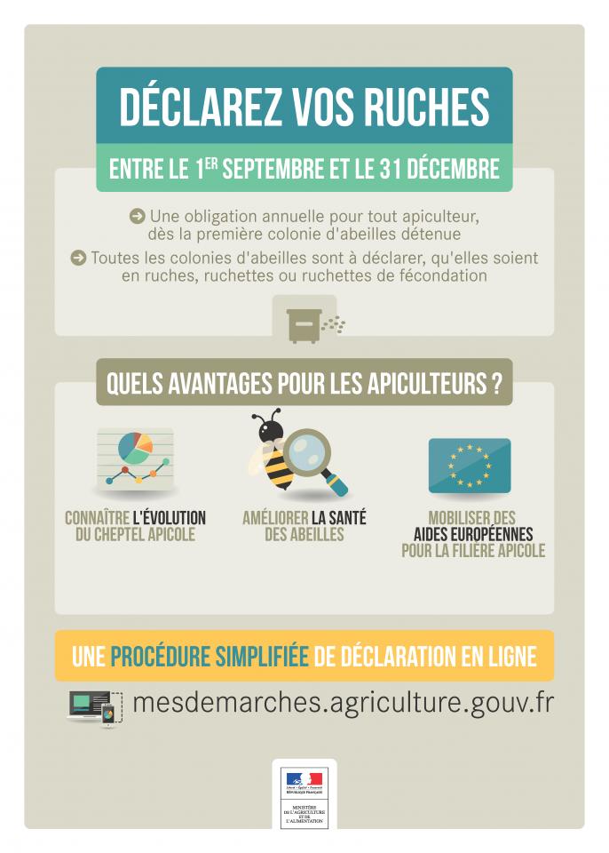 Affiche declaration ruches